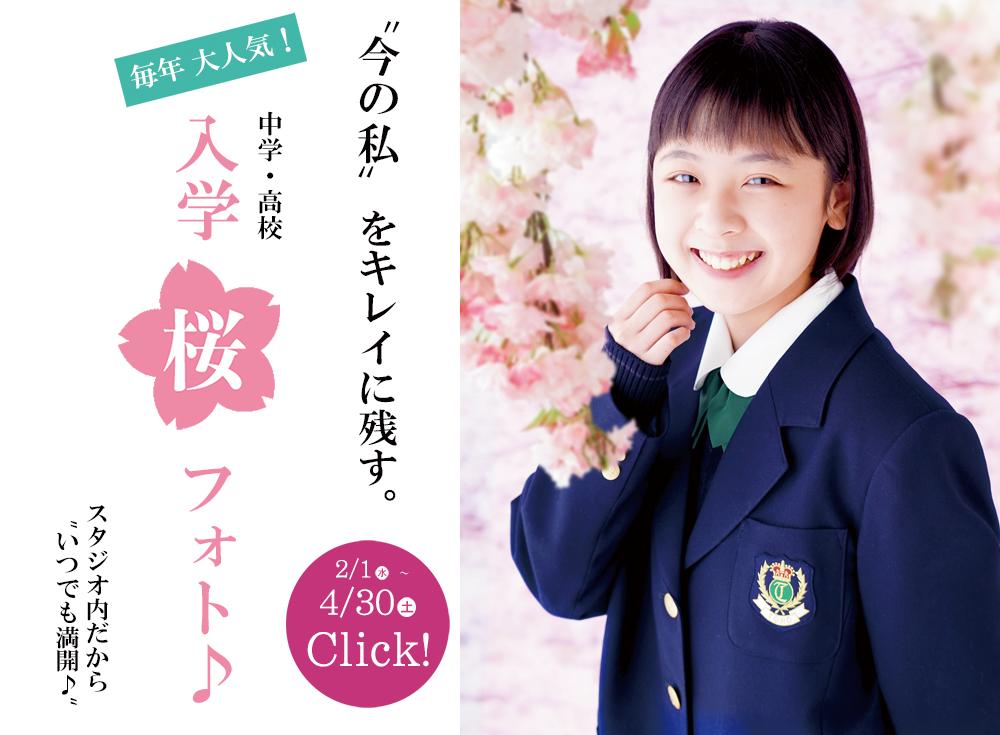 中学・高校入学桜フォト